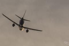 ACE_7085-Airbus A320-211 - Lufthansa D-AIQU