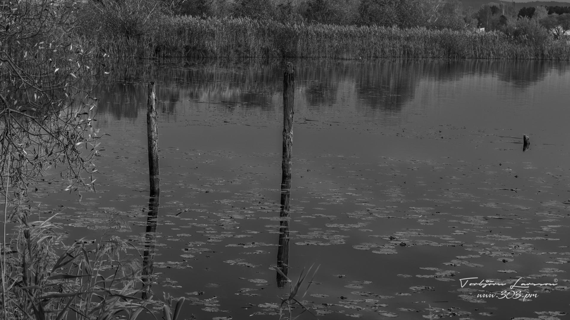 Spegling i Munksjön