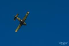 TBE_1853-Scottish Aviation Bulldog (SK-61) (SE-MEK)