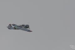 TBE_3970-Yak-52 (SE-LXM)