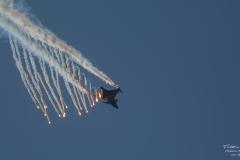Jas-39-Gripen-F17-Kallinge-75-år-TBE_2173