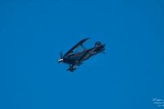 Pitts S-2C