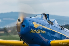 Fairchild-Cornell-PT-1919-A-22Spirit-of-Little-Norway22-LN-BIF-TBE_6123