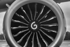 Boeing 787-8 Dreamliner - Qatar Airways Flight QR177 (A7-BCA) - Engine - ACE_1196