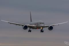Boeing 787-8 Dreamliner - Qatar Airways Flight QR177 (A7-BCA) - TBE_3375