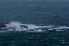 Rough wind Marstrand