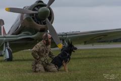 Dog - CA-13 Boomerang
