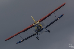 TBE_9508-Antonov AN2TD