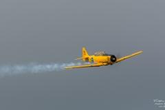 SK-16A-North-American-T-6-Texan-TBE_8911