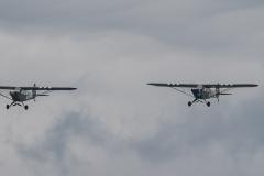 Piper-L-4J-Grasshopper-x2-LN-RAP-LN-SAI-Piper-J-3C-65-Cub-LN-MAV-TBE_5993