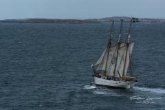 Ship on the way...