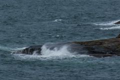 Rough wind Marstrand