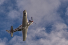 ACE_5366-North Amercian P-51D Mustang