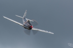TBE_9879-North Amercian P-51D Mustang